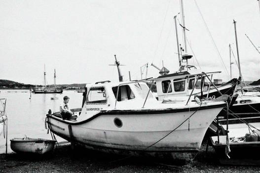 Young Fisherman