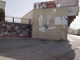 Street shoot Israel-Palestine 2