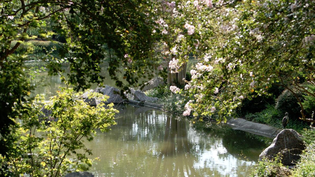 Calm Waters by AyatoWard