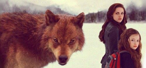 BDP2 ~ Bella, Renesmee, Jacob wolf by twihardBreakingDawn ...