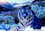 Dreamscape tiger