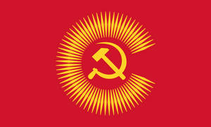 Flag Commonwealth of Socialist Nations