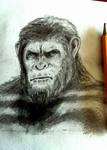 Caesar Pencil Sketch