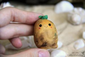 Potato Spirit