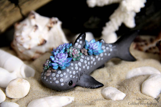 Whale shark with Succulents