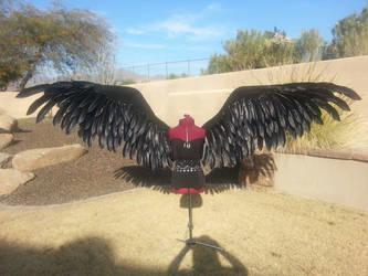 Spread large black wings