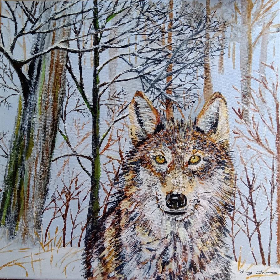 Winter Woodland Wolf