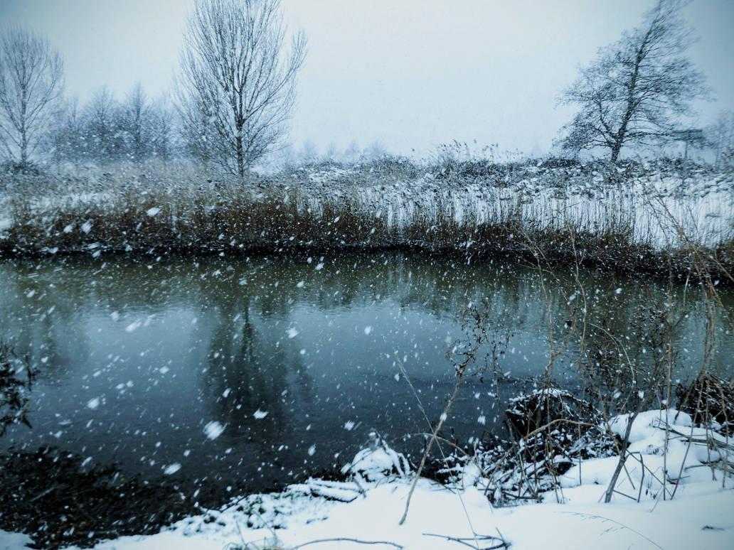 Snowy Winter Blues