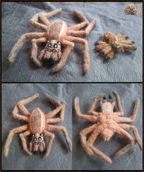 Felted Wool Wolf Spiders