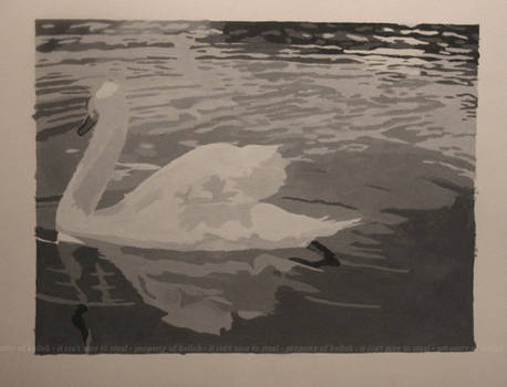 Swan Abstraction