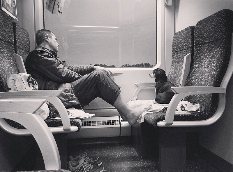 on train by cosmin-m