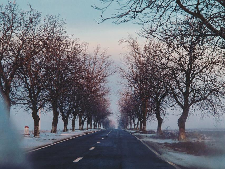Winter mood road by cosmin-m