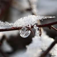 Winter Wonderland 010 by Frank-Beer