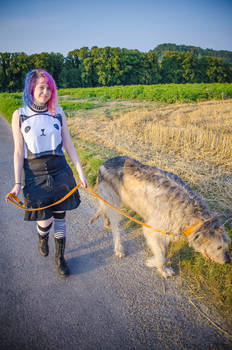.: Summer Walk with a Wolfhound :.