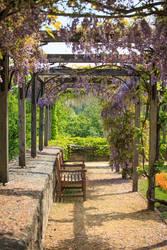 Italian Garden by Frank-Beer