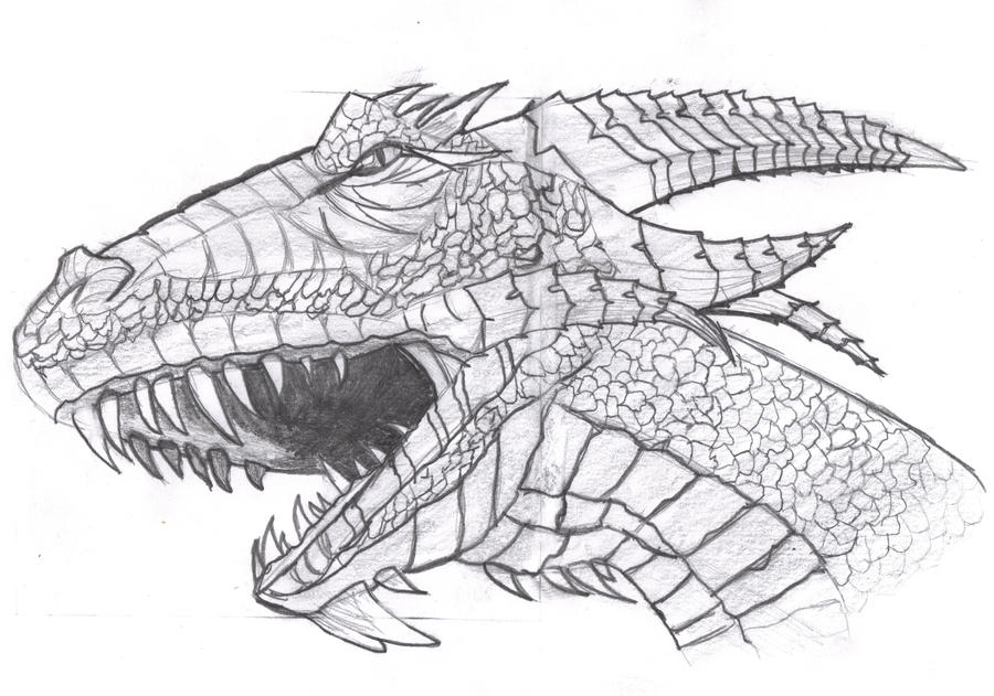 Dragon head draw by film204