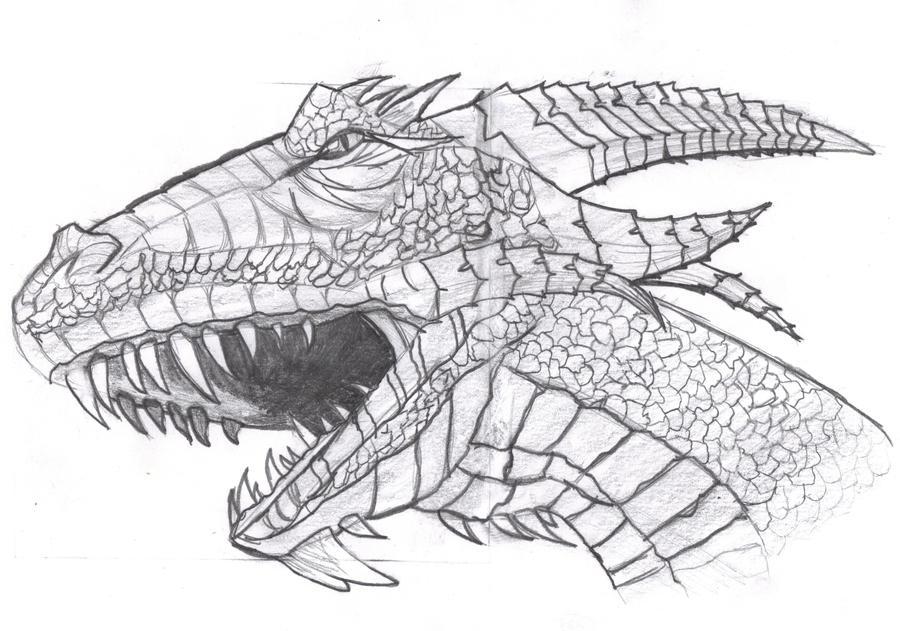 Galerie a dessin de Film204 New dessin  Dragon_head_draw_by_film204-d5sniyl