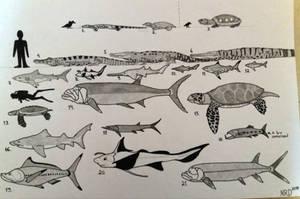 Campanian Fauna of Appalachia-Size Chart Part 2 by NRD23456
