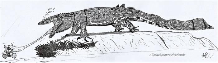 Fauna of Rivera: The colorful aquatic drake by NRD23456