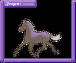 Foal ID #1008 - Design Holder by DragonsTigerLilly