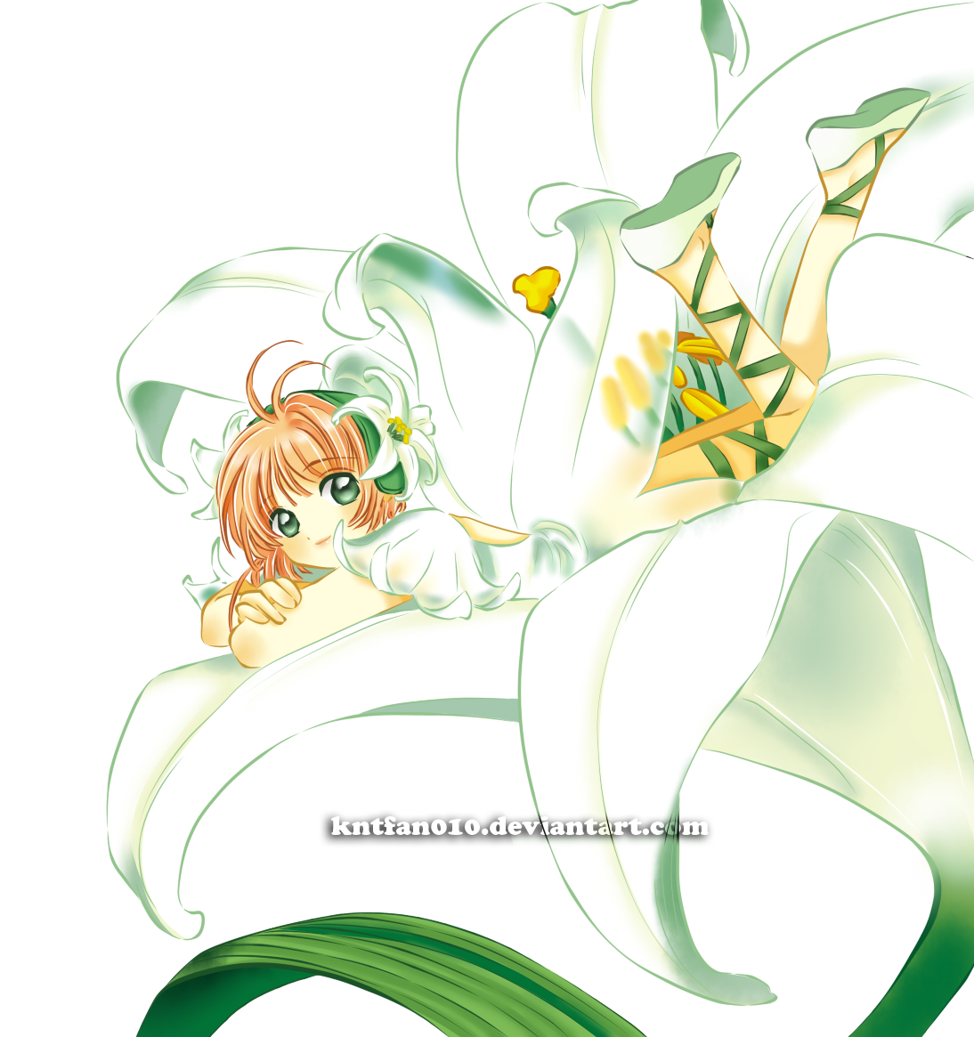 the fairy by kntfan010