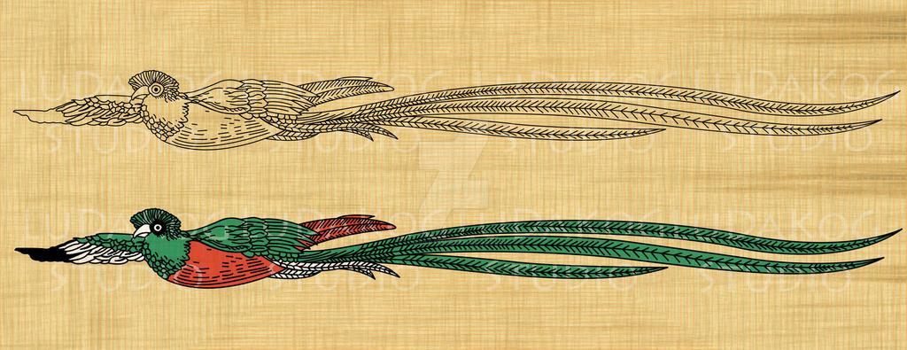 Quetzal del billete de Guatemala by LoboDKrakenG