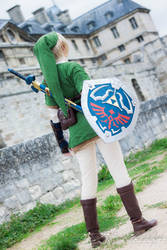 Welcome to Hyrule by Lye1