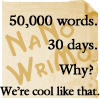 NaNoWriMo No.2 by sylver-shadow