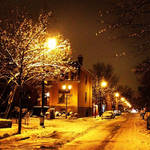 Snow in Montreal