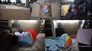 Happy Birthday Rainbow Dash by Oppositebros