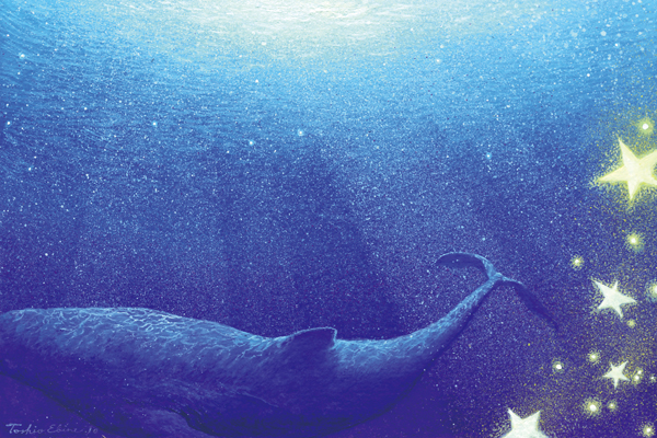 whale magic by Ebineyland