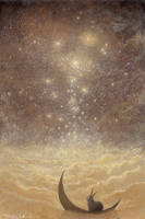Star Falls by Ebineyland