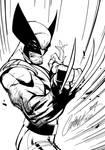 Wolverine - Inks