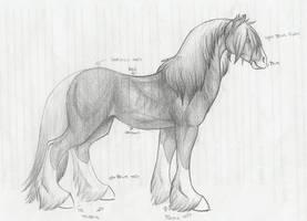 Horse by teh-ryu-neko