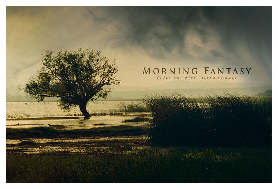 Morning Fantasy III by akirmak