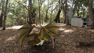 Dragon-Flight1