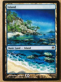 MtG Island Alter (2)
