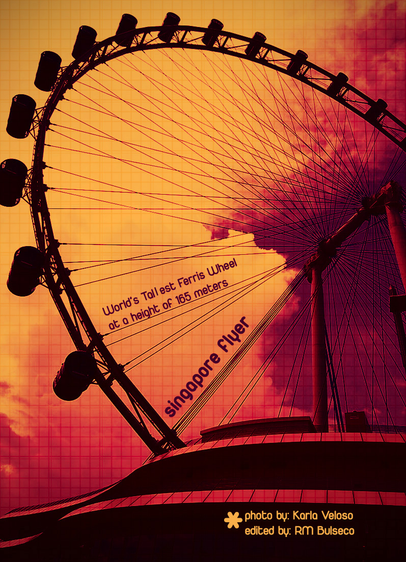 The Singapore Flyer by baloneyart