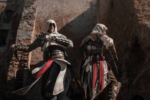 Dance of the Blades  Assassins Creed Cosplay