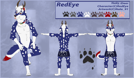 RedEye Reference Sheet - Commission