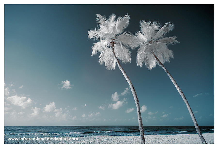 Barbados infrared