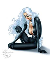 Miller's Black Cat - Colors