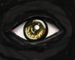 Random Eye by Vivi1995