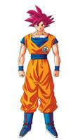 Goku Super Saiyan God Normal DBZ 2013