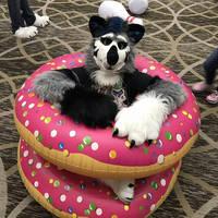 AWU 2017 - Donuts