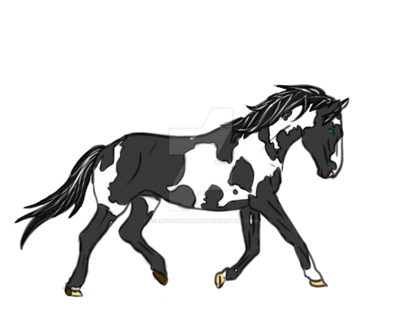 Black and White Pinto Mustang [AT] by ScarecrowLullaby