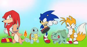 Sonic heroes: Pokemon