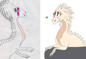 Before and After White Dragon