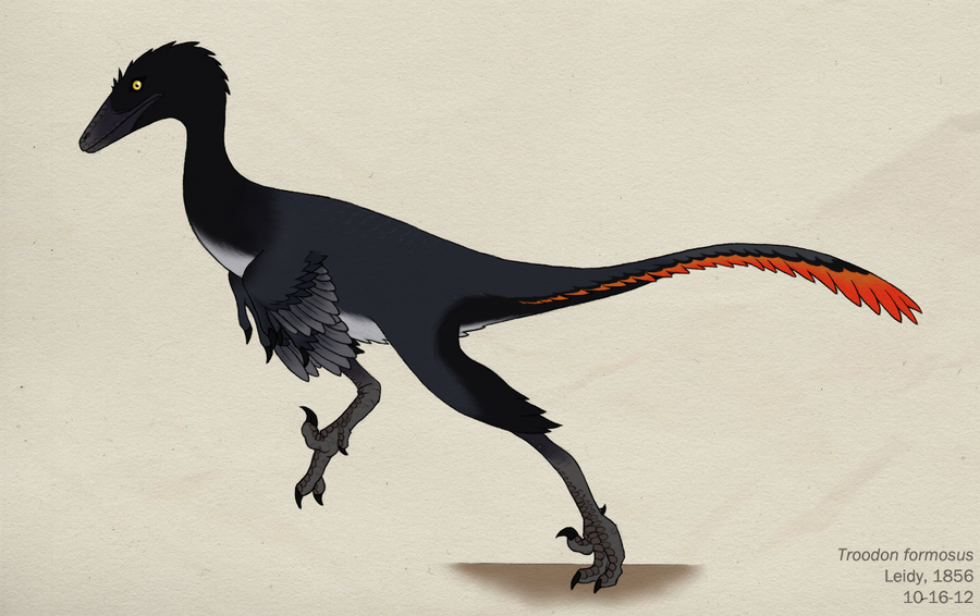 080__troodon_formosus_by_green_mamba-d5i4vrk.png