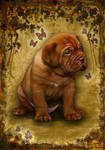 Puppy Dogue De Bordeaux.